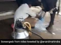 शख्स ने ट्रैक्टर की मदद से निकाला भैंस का दूध, आनंद महिंद्रा हुए मुरीद, बोले- 'क्या चालाकी दिखाई है...' - देखें Video