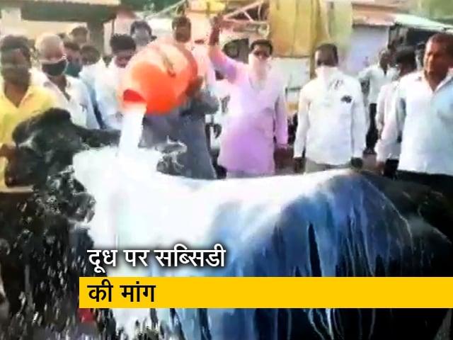 Videos : महाराष्ट्र में दूध उत्पादक किसानों का प्रदर्शन