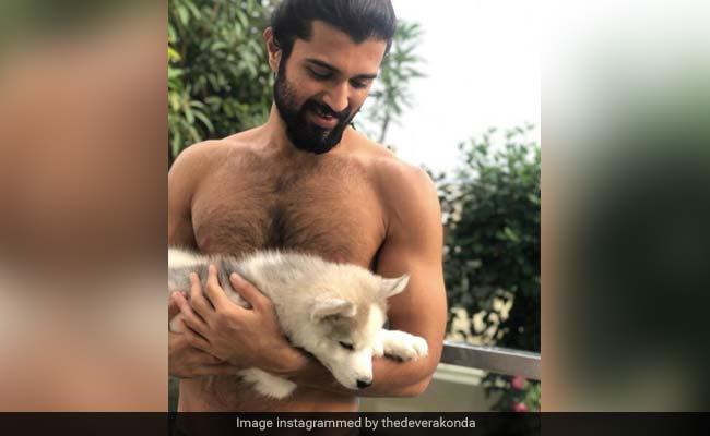 "Pic Of Shirtless Vijay Deverakonda And His ""Cute Beast"" Sends Instagram Into Meltdown"
