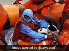 Karnataka Flood: चरवाहे लड़के ने बचाई अपने कुत्ते की जान, तारीफ किए बिना न रह सके NDRF के DG