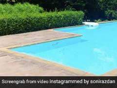Alia Bhatt के घर स्विमिंग पूल में निकला सांप, पहले पानी में मारी डुबकी और फिर...Viral हुआ Video
