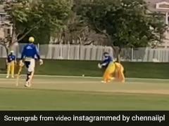MS Dhoni ने बैठकर जड़ा ऐसा छक्का, स्टेडियम पार कर गई गेंद, फील्डर बोला- 'गुम हो गई बॉल' - देखें Video