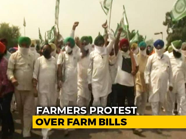 Video : Why Farmers In Haryana, Punjab Are Protesting Against New Farm Bills