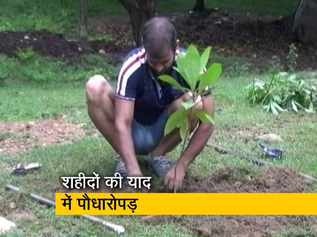 Videos : बिहार: पेड़ लगाकर शहीदों को श्रद्धांजलि, 1982 से लगातार लगा रहे हैं पौधे