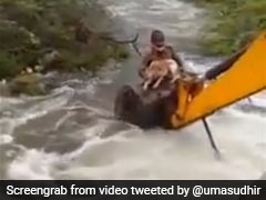 Watch: Telangana Home Guard Risks Life, Saves Dog Stuck In Flooded Stream