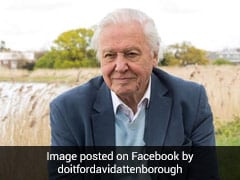 Sir David Attenborough Broke This Record When He Joined Instagram