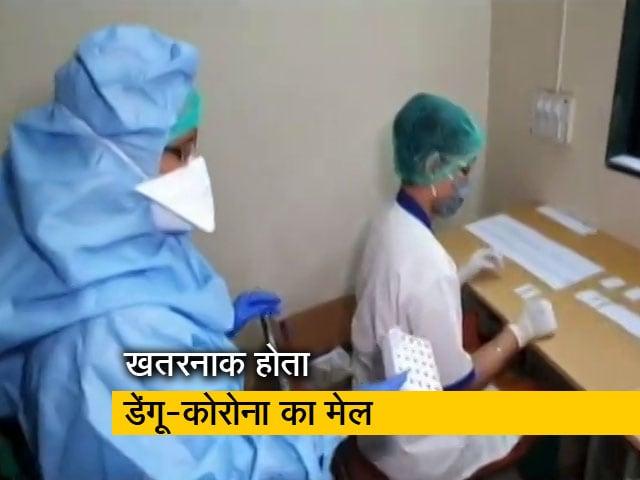 Videos : कोरोना महामारी के साथ डेंगू ने बढ़ा दी मुसीबत, जानलेवा है ये मेल
