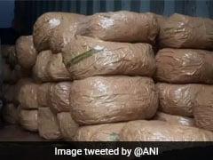 500 Kg <i>Ganja</i> Worth Rs 20 Crore Seized In Kerala