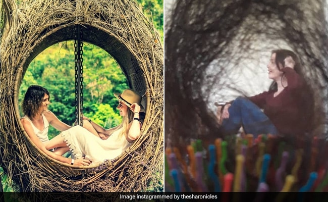 Travel Blogger Recreates Holiday Pics With Household Items. Results Are LOL