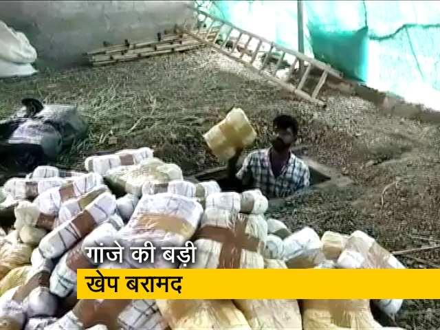 Video : बेंगलुरु : 1350 किलो गांजा एक फार्म हाउस से बरामद