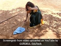 घर में छिपा बैठा था सांप, साड़ी पहनकर शादी में जा रही महिला ने दबोचा और फिर - देखें Video