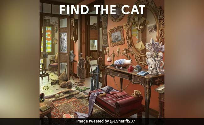 There's A Cat Hiding In Plain Sight In This Picture. Can You Find It?