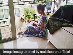 मलाइका अरोड़ा ने  Puppy के साथ शेयर की क्यूट सी Photo, बोलीं- 'दो कंपनी'