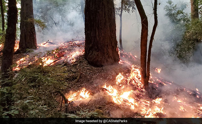 Wildfire Leaves California's Oldest Park Too Hazardous For Visitors