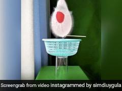 लड़की ने पानी से भरे गुब्बारे को फोड़ा सुई से, स्लो-मोशन Video को देख लोगों के उड़े होश