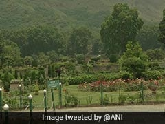 J&K's Mughal Garden To Be Included Into UNESCO World Heritage List