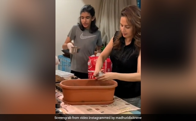 Photo of Madhuri Dixit Sets Up A Kitchen Garden With Her Family. See Her Post