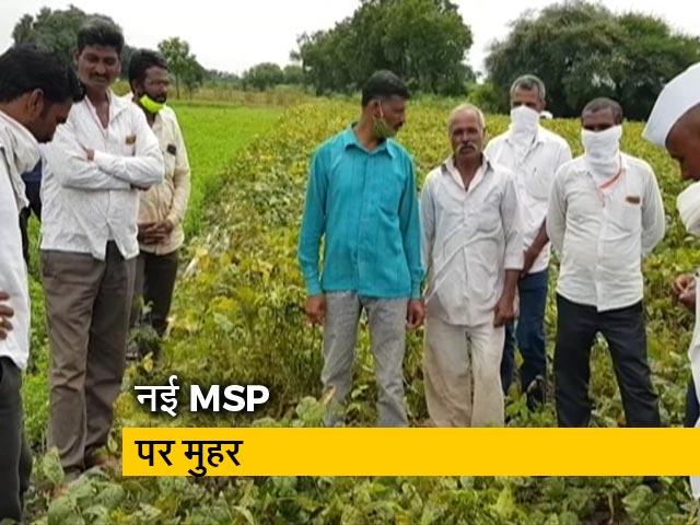 Video : सरकार ने एमएसपी बढ़ाने का किया ऐलान, रबी की फसलों के लिए नई MSP को मंजूरी