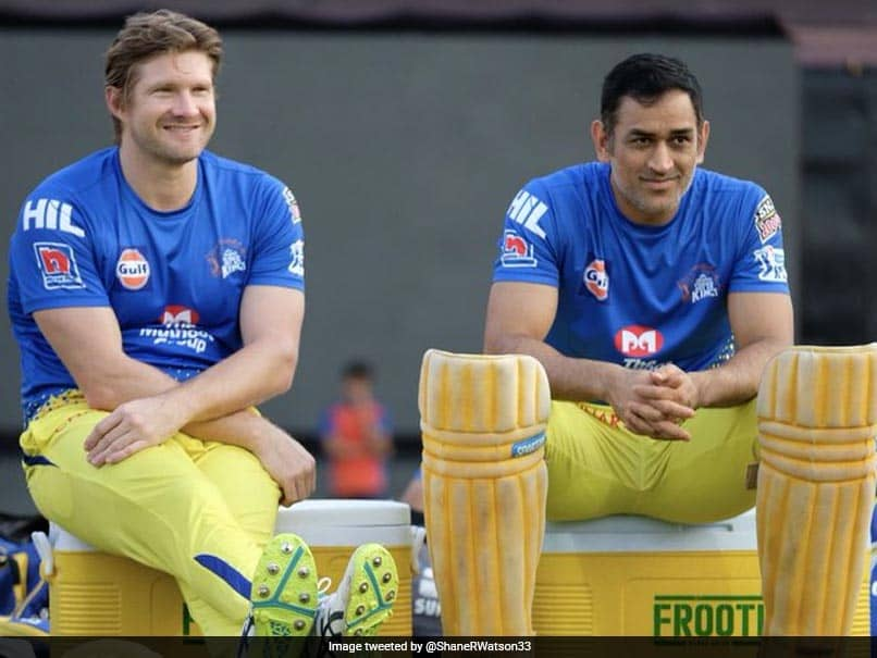 """IPL 2020: Shane Watson Believes CSK Can Have A """"Great"""" Season"""