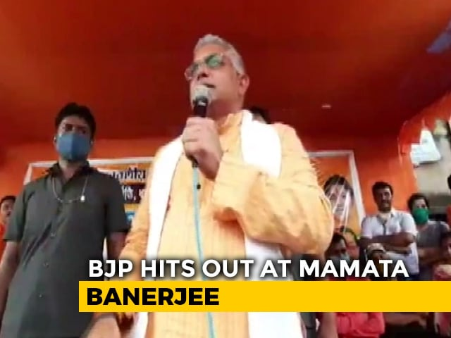 "Video : ""Corona Is Gone,"" Declares BJP's Bengal Chief At Crowded Rally"