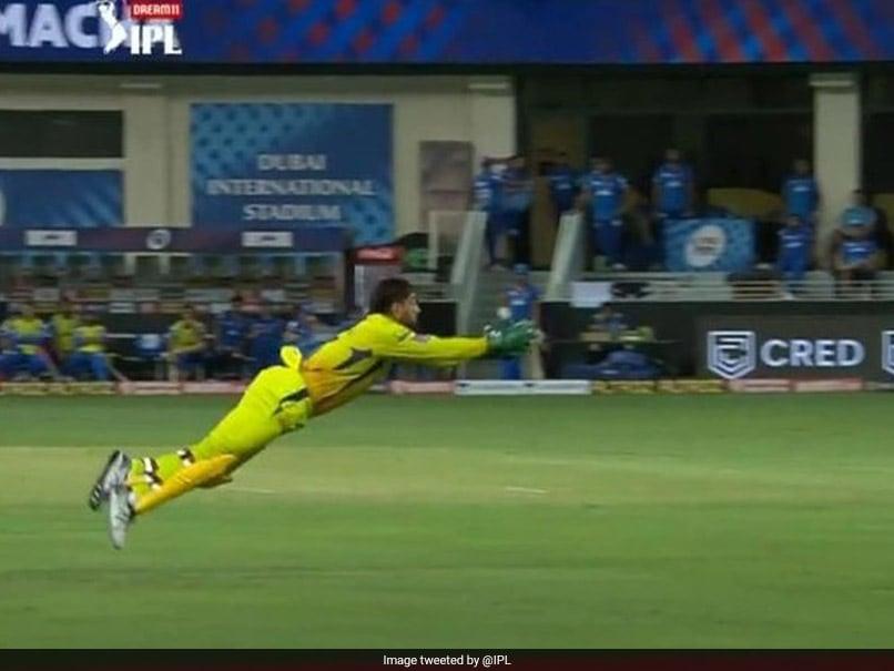 IPL 2020, DC vs CSK: MS Dhoni Takes Flying Catch To Dismiss Shreyas Iyer. Watch