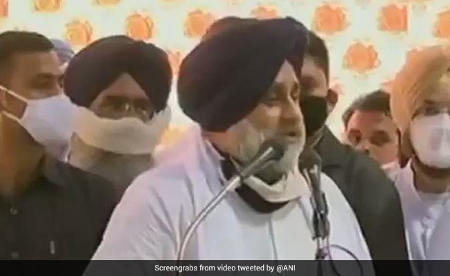 'Luxury Sit-In': Sukhbir Badal Slams Amarinder Singh On Farm Bill Protest