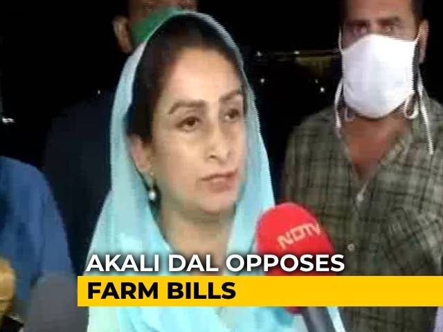 """Video : """"There Was Time To Get Farmers' Confidence"""": Harsimrat Badal On Farm Bills"""
