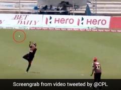 CPL 2020: 48 वर्षीय प्रवीण ताम्बे ने हवा में उड़कर लिया हैरतअंगेज कैच, देखता रह गया बल्लेबाज... देखें Video