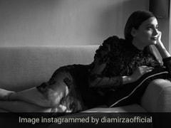 ब्लैक फ्लोरल ड्रेस में एलिगेंट लुक में नजर आईं दिया मिर्जा, देखें Photo