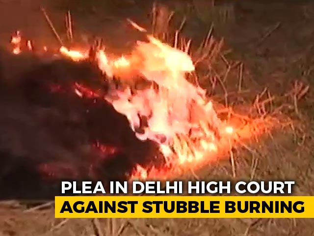 Video : Stubble Burning Will Increase Covid Cases: Plea Before Delhi High Court