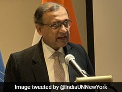 India Will Promote Democracy, Human Rights At United Nations: Envoy