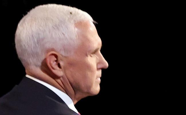 Fly On Pence's Head Is Social Media Winner Of Vice Presidential Debate