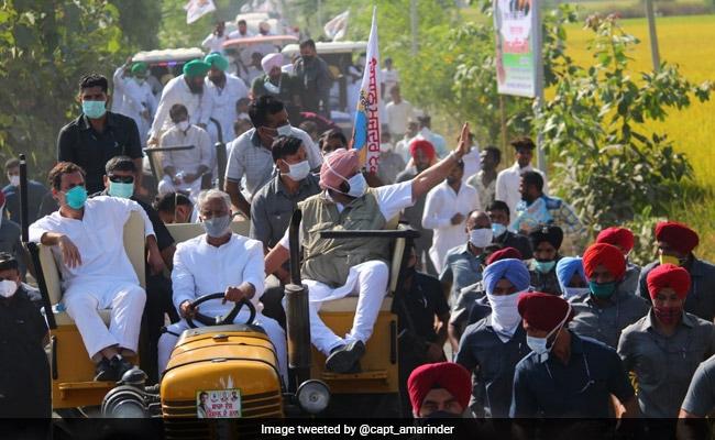 'Will Not Rest Till Farm Laws Go': Amarinder Singh At Mega Punjab Rally