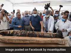Viral Video: Ancient Mummy Coffin, Sealed 2,500 Years Ago, Opened In Egypt