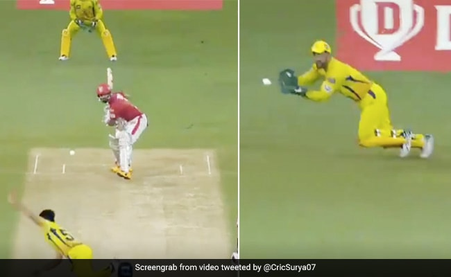 IPL 2020: clever and clever MS Dhoni caught caught flying in the air, watching KL Rahul - watch video