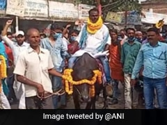 Independent Bihar Polls Candidate Comes On A Buffalo To File Nomination