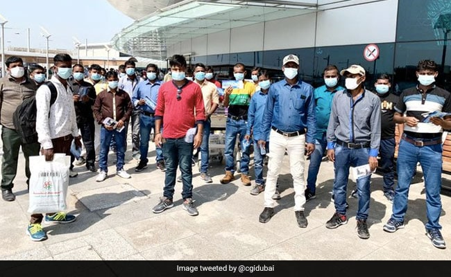 49 Workers Stranded For Months In UAE Brought Back To India: Report