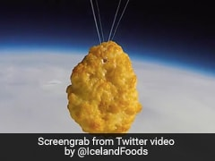 First Chicken Nugget Sent Into Space - Twitter Calls It Best News Of 2020