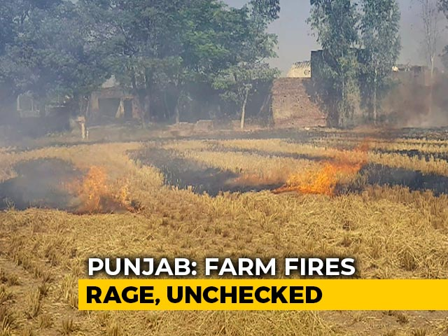 Video: Punjab Behind Major Spike In Farm Fires?
