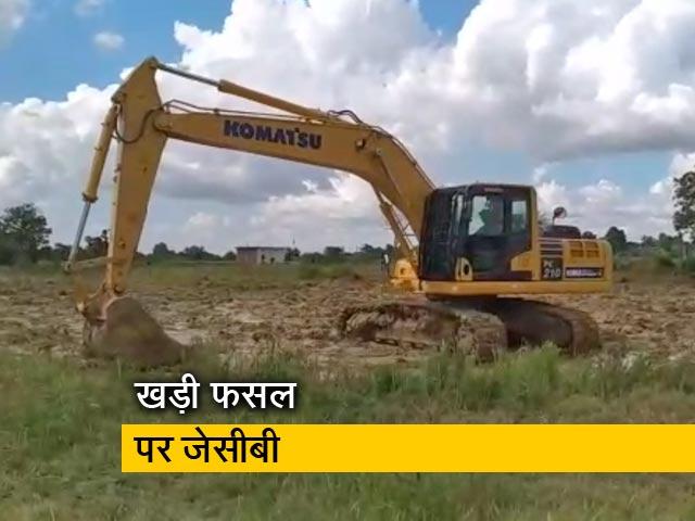 Videos : अंबिकापुर: लहलहाती फसल को निगम ने रौंदा, रोते बिलखते दिखे किसान