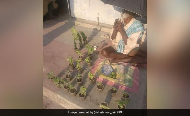 बेंगलुरु में सड़क के किनारे बुजुर्गों को बेचने में मदद करें