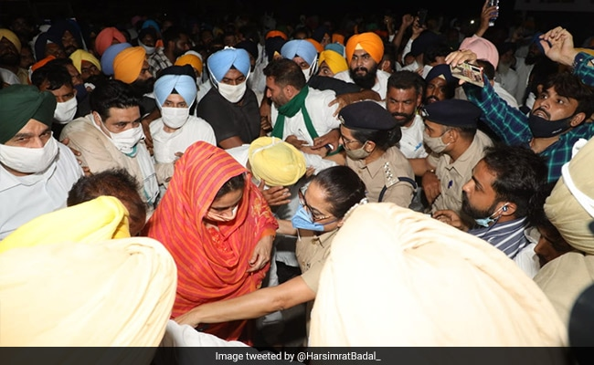 Harsimrat Badal Arrested In Punjab Over Protest Against New Farm Laws