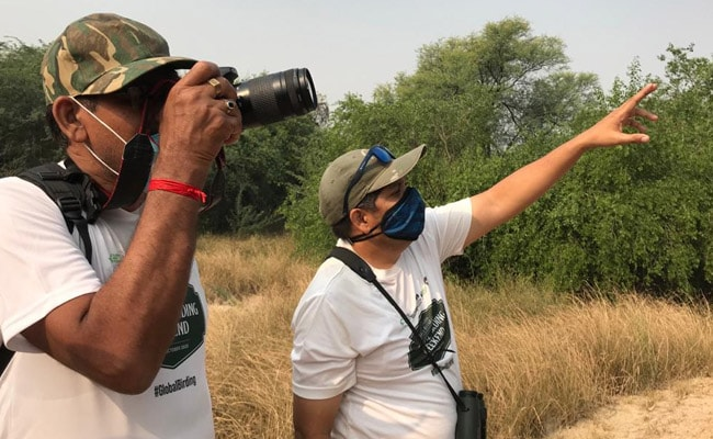 Over 300 Species Enchant Birdwatchers At 3-Day Event In Rajasthan
