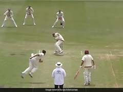 """""""Brute Of A Ball"""": Mitchell Starc Hits Marnus Labuschagne With Vicious Bouncer. Watch"""
