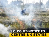 Video : Top Court Notice To Centre On Plea To Ban Stubble Burning In Punjab, Haryana