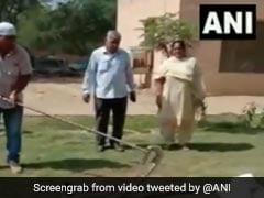 8-Foot Long Python Rescued From Back Of Car In Haryana
