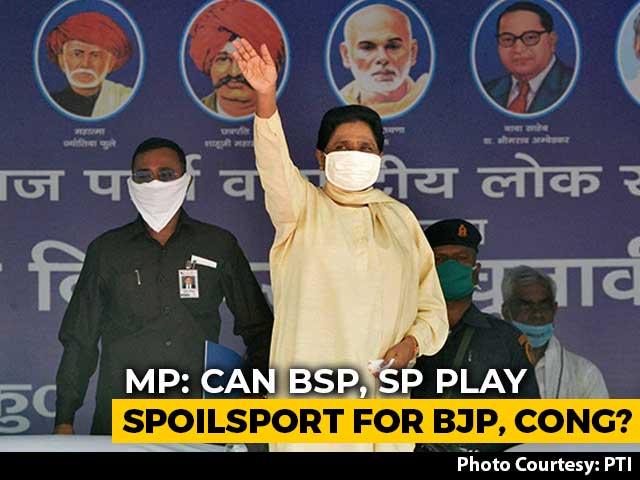 Video : Mayawati, Akhilesh Yadav's Bid To Shake Up Usual Madhya Pradesh Poll Math
