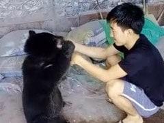 Take Care Of Luba: Arunachal Boy's Tearful Goodbye To Rescued Bear Cub
