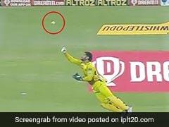 IPL 2020: MS Dhoni ने चालाकी से पकड़ा खतरनाक कैच, लोग बोले- 'शेर बूढ़ा हुआ है, शिकार करना नहीं भूला...' - देखें Video