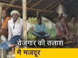 Video : बिहार में रोजगार नहीं मिलने से परेशान लोग